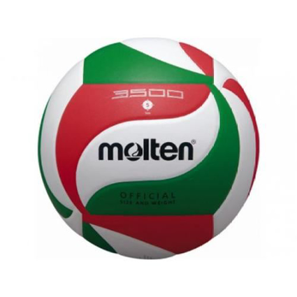 Picture for category Volleyballs